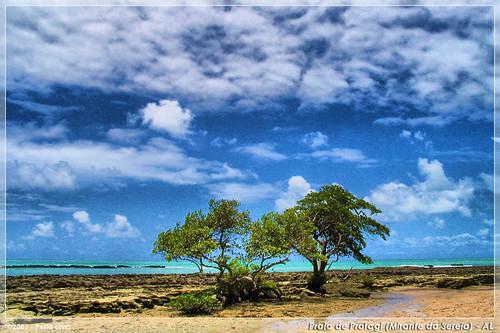 Mirante da Sereia (Praia de Pratagy) - Maceió