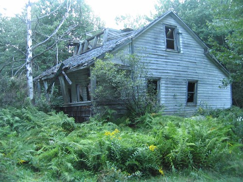 The abandoned house in the woods