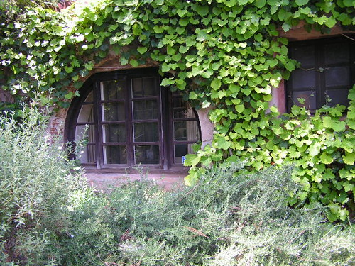 The Old Mill-El Molino Viejo 003