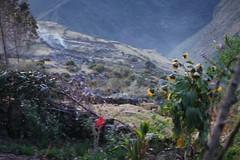 PERU2008 125 (zoomcharlieb) Tags: yanama peruvianimages
