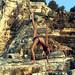Yoga Asanas - Kefalonia 2008 - Emelisse Hotel