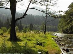 2008.08.18-25 1177 (szekely_tm) Tags: river olt bailetusnad tusnádfürdö