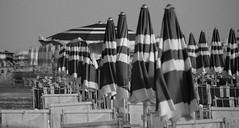 chi  il ritardatario?!? (ambro91) Tags: mare solo bianco nero spiaggia sera igea tardi ombrellone