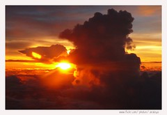 Uprising (Araleya) Tags: leica travel sunset sky cloud sun sunlight nature colors rain weather wonderful airplane thailand golden flying udon twilight colorful ray seasonal flight atmosphere aerial panasonic formation feeling goodbye moment magical udonthani uprising windowseat rainyseason phenomena fz50 fromairplane endoftheday uprise supershot beautfiul araleya diamondclassphotographer flickrdiamond theperfectphotographer goldstaraward troopical beautfiulmoment meteolorogical