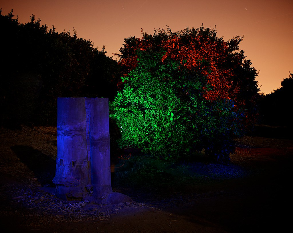 Light Painting, Orange Groves, Riverside, CA