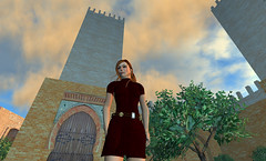 Virtual Pioneers Presentation for the DEN in SL-16.png