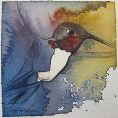 hummingbird (Jennifer Kraska) Tags: art birds watercolor hummingbird jennifer hummer ballpoint ballpointpen kraska