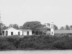 Archivo Tlacotalpan - Agosto 2008 (64)