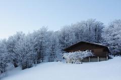 =· (el taxidermista) Tags: blue winter sun snow ski france ice azul sunrise canon dawn nieve amanecer invierno francia hielo xsi iraty 450d cottagesnow blancosnow whitesnowsnowsnow