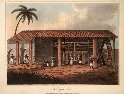 023-Brasil -Ingenio de azucar-trapiche