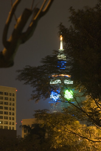 2009 New Year (Taipei 101)