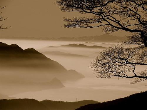 Nebbia sul Verbano (by mauroponti)