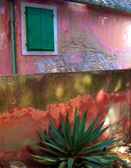 Colorful facade (Marite2007) Tags: pink houses red orange color colour green texture beautiful stone architecture facade outdoor decay scenic vivid croatia worn aged picturesque derelict rundown dwellings dalmatia disrepair shuttered wallswindows 10faves flickrcolour abigfave