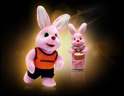 3239345618 c1d5e6df73 m Energizer vs Duracell Bunny : What's the deal?