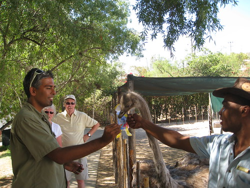 South Africa 2009 231