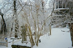 Looking across the middle tier of our yard (junebug_1944) Tags: icestorm eurekaspringsar january2009