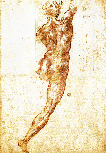 Study of a male nude by Michelangelo