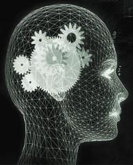 Фото 1 - Величина мозга влияет на здоровье
