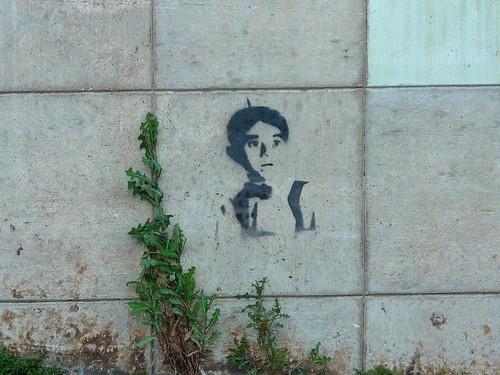 stencil alfalfa