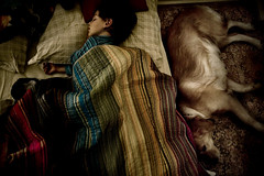 0066 (Cia de Foto) Tags: sleeping dog pet home kid bed nap child son intimacy