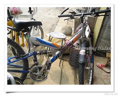 nEO_IMG_2008_0608_150019Birdy () Tags: travel bike birdy