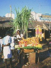 Garland Seller, Trichy, Tamil Nadu, India, 1969 (east med wanderer) Tags: flowers india 1969 seller tamilnadu trichy garlands tiruchirappalli theindiatree worldtrekker