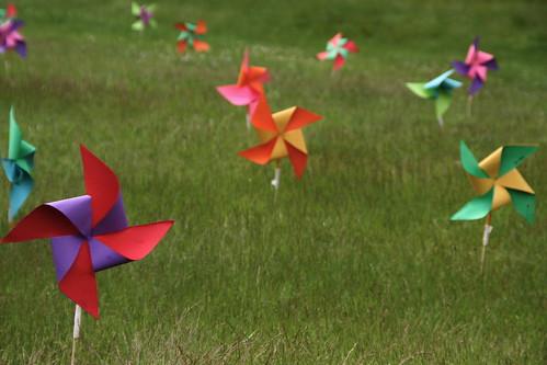 sea of pinwheels