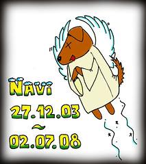 Navi is dead