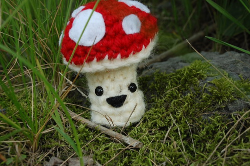 my happy little mushroom