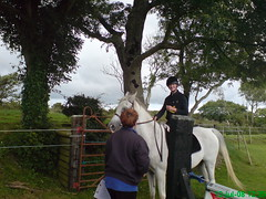 Debbie and Ziggy (shiresqualifier) Tags: stables shires trefor qualifier