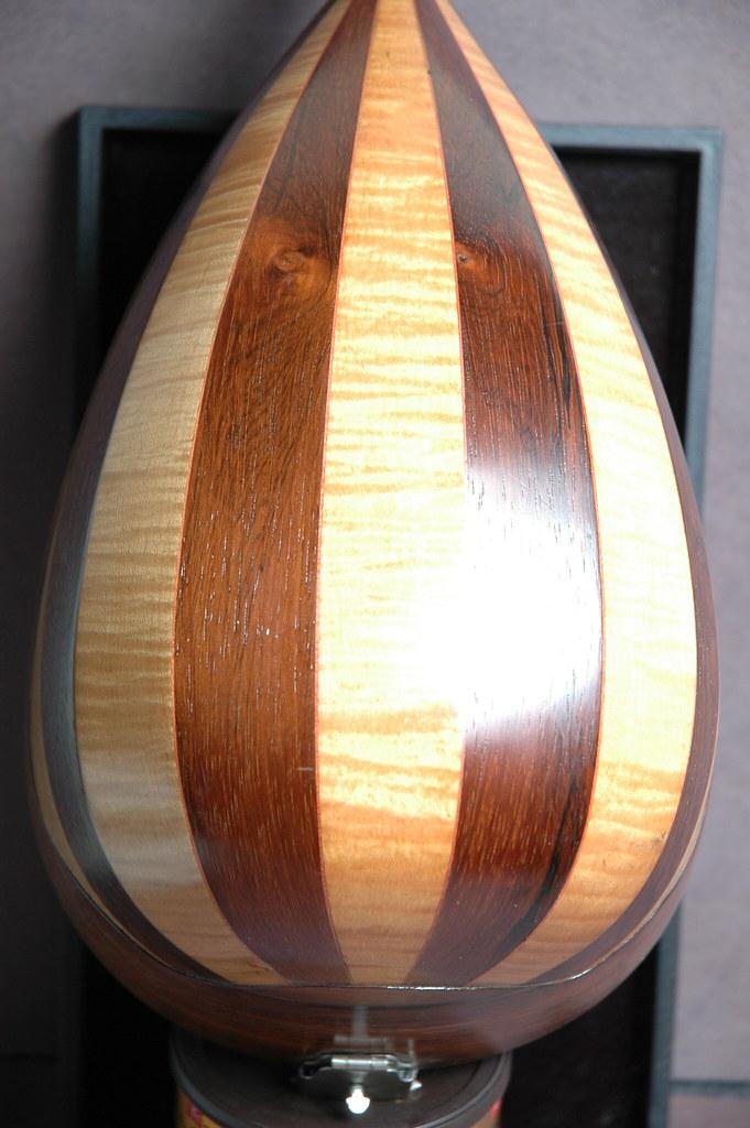 Washburn mandolin (3)