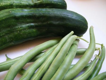 The first Cukes and Beans from My Garden