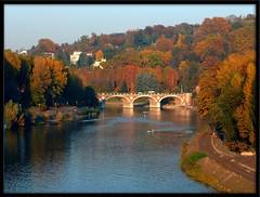 Autumn 3 (maurococi) Tags: bridge november autumn trees alberi river torino novembre fiume hill ponte po autunno turin collina