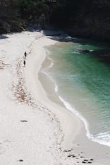 Point Lobos - Gibson Beach