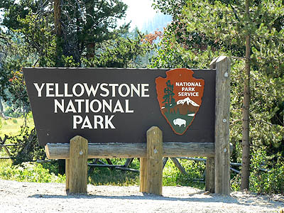 Yellowstone National Park .jpg