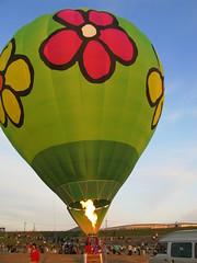 2008 Oku Balloon Fiesta 185 (Futoshi ) Tags: balloon hana 2008 oku