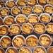Šuhajdy - orechové