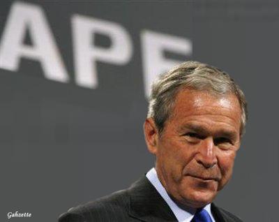 Ape Bush