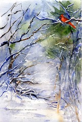 Cardinal Greetings (Artist Naturalist-Mike Sherman) Tags: christmas holiday watercolor painting cardinal islandpark kunstplatzlinternational