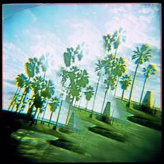 Holga Lens = Done (roostercoupon) Tags: california ca venice trees 120 film beach broken glass square lens toy graffiti la losangeles holga lomo xpro cross image kodak towers slide palm plastic filter pavilion medium format split process vignette e100gx cracked 120n