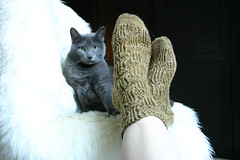 socks-and-the-kitty2