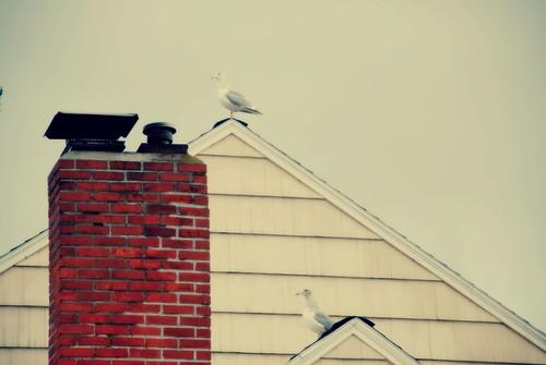 random Portland rooftop I