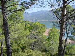 2002-10-26 11-15 Andalusien, Lissabon 142 Parque Natural Jaen