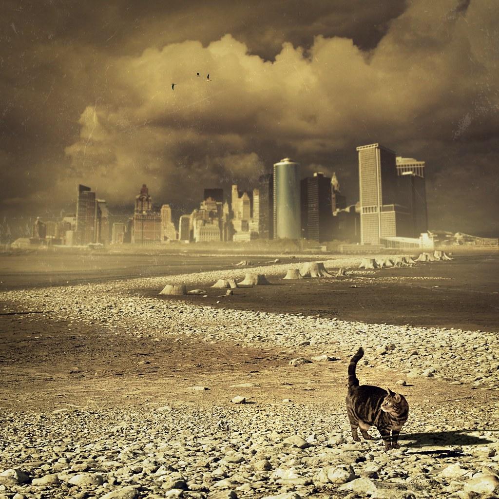 Apocalypse, now