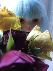 Flower Girl