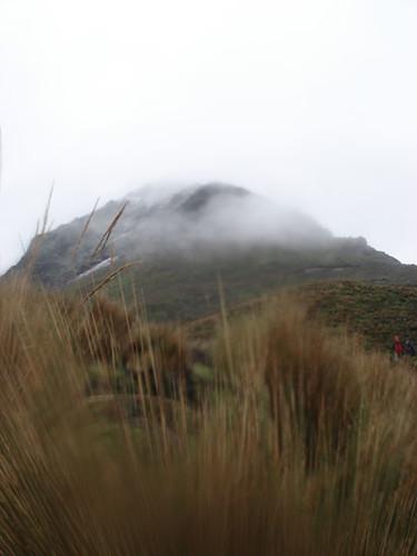 Corazon ecuador