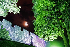 Green Shoots (Devine Andy) Tags: york trees light moon green grass wall night yorkshire medeivel kingsmanor