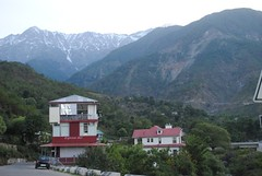 Santushti Homestay seen is Dhauladhar ranges