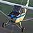 Champion Air Photos icon