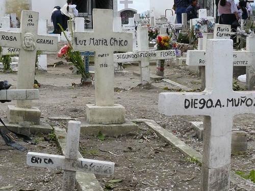 Well tended graves